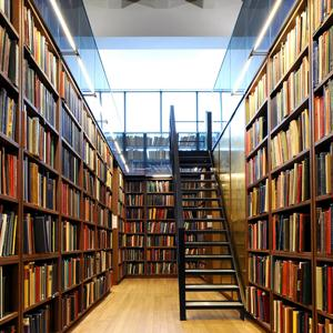 Библиотеки Ногликов