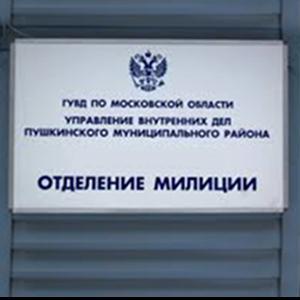 Отделения полиции Ногликов